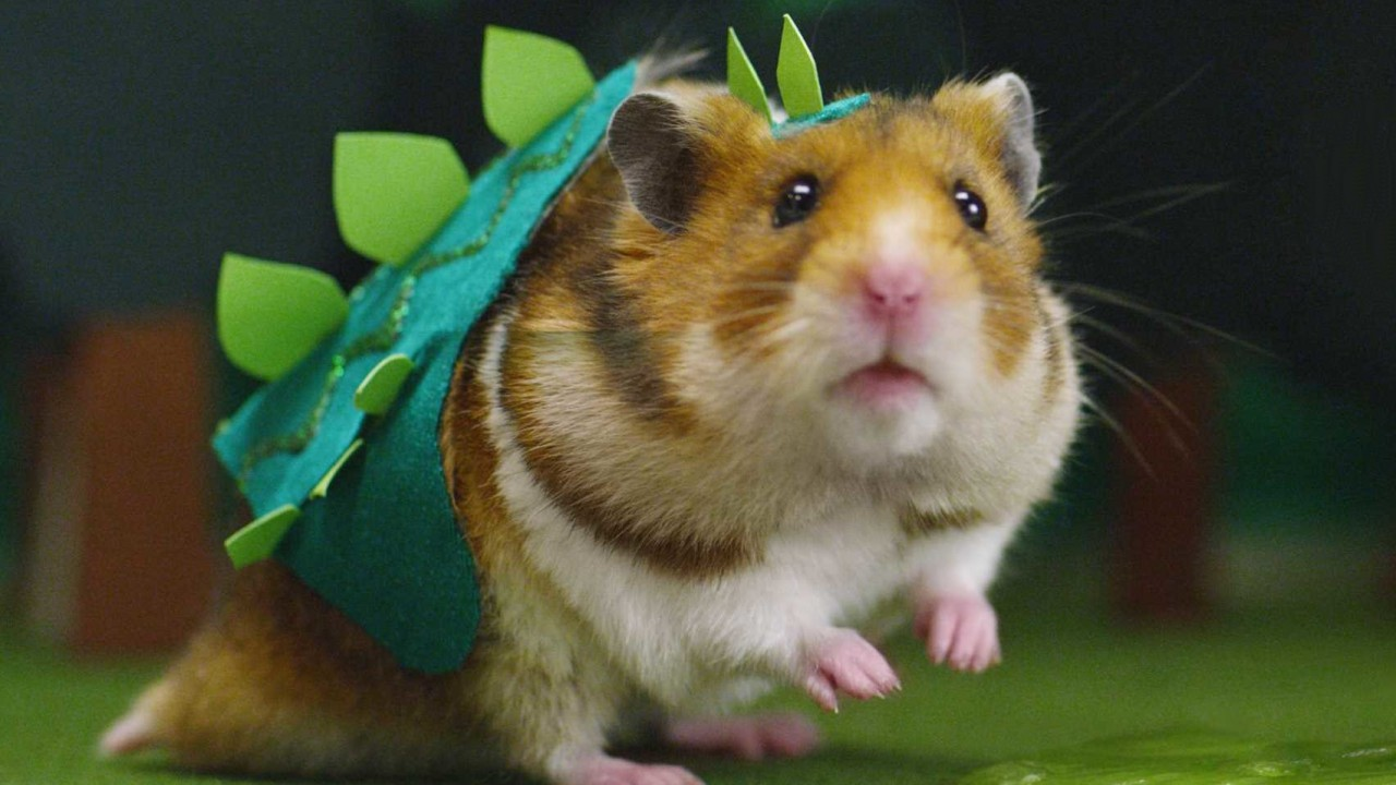 Video of the Day: 'Tiny Hamster is a Giant Monster!'